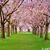Wholesale 5x7ft Vinyl Sakura Tree Spring Grass Field Photography Studio Backdrop Background