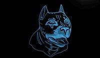 american bull terrier - LS645 b American Pit bull Dog Terrier Neon Light Sign jpg