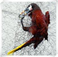 La trampa del halcón de la Venta al por mayor-Mejor / la red de la trampa / del halcón del halcón con la alta calidad del precio bajo libera el envío de China