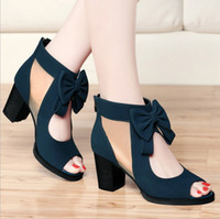 Wholesale 2017 Luxury Elegant Woman Dress Shoes Hot Fashion High Heel New Style Women Shoes Work shoes Blue Black