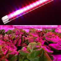 Wholesale 2ft ft T8 intergrated LED Grow tube light for Indoor Plant Growing Lights Bulbs Lamp Lighting