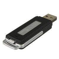 Wholesale High Qaulity in GB GB GB Digital Voice Recorder USB Flash Drive