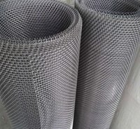 Wholesale 30m m Plain Weave Stainless Steel Crimped Mesh High Quality Woven Wire Mesh for Screen Filter and Fence Application