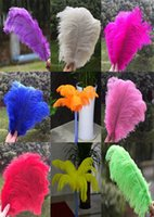 Wholesale Inch cm Natural Ostrich Feather Multi Choice Wedding Decoration
