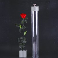 Wholesale Preserved Rose One Piece In Box Multiple color Flower For Gift Home Decoration Hot sale preserved flower from China
