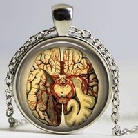 american biology - Steampunk Jewelry Anatomical brain necklace pendant Gothic necklace science pendant biology medical student gift