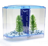betta fish tanks - BBT3 Twin Betta Bow Front Tank Aquarium Kit perfect starter kit for owners of a pair of Betta fish Fish Tank