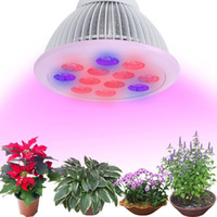 Wholesale Full Spectrum LED Grow Lights AC85 V PAR Growing Bulbs For Flower Plant Hydroponics System Grow Box With CE ROHS W W W