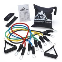 anchor charts - Black Mountain Products Resistance Band Set with Door Anchor Ankle Strap Exercise Chart and Resistance Band Carrying Case