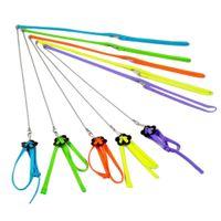 Wholesale ASLT Practical Random Color Soft Fashion Leash Adjustable Multicolor Parrot Bird Harness Ligh
