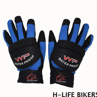 Wholesale Waterproof Windproof Winter Glove Polyester Anti uv Fingers Separated Blue Red Black for Outdoor Racing Cycling Motorcycle Accssory