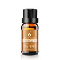 Wholesale Vivi s Secret V32 Pure Tea Tree Essential Oil ML Therapeutic Grade for Massage Skin Care Aromatherapy Diffuser and Eliminate Acne