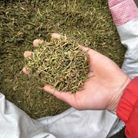 Wholesale Hot Sale Ma huang tea Healthy Herbal Tea g