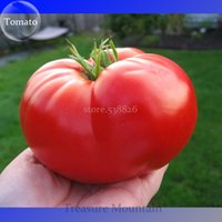 al por mayor semillas vegetales-Heirloom Gigante Monstruo Tomate Genuine Fresh Seeds, Paquete Profesional, 100Seeds / Pack, Muy Rara Verduras TS177