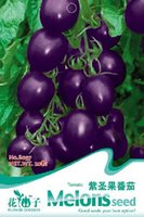 Wholesale ONLY Bag Tomato Seed Purple Tomato Vegetable Fruit Lycopersicon Esculentum A