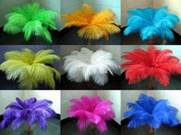 Wholesale inch cm Ostrich Feather White Black Red Yellow Blue Pink Purple Lake Blue Green Orange for Wedding centerpiece