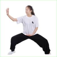 Wholesale Unisex Kung Fu Tee Shirt Cotton Short Sleeve for Man Women Extra Size