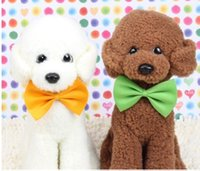 Wholesale fashion cute pet dog bow tie multiple color bowknot dog and cat supplies pet hearddress flowers