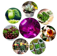 Wholesale LED Grow Lights Hgrope W LED Clip Desk Lamp Clamp Flexible Neck Degree For Hydroponic Garden Greenhouse