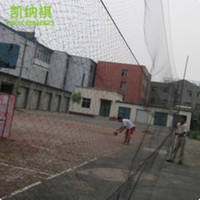Wholesale 10pcs x6 M Nylon monofilament mm mm Hole Orchard Garden Anti Bird Net Knotted Mist Net with Pockets
