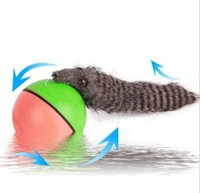 animal chaser - Waterproof Electric Beavers Ball Weasel Rolling Motor ball nutria head the ball in water kids Chaser moving toy novelty gifts