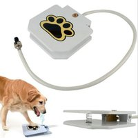 Wholesale Cheap pet supplies Europe and the United States the high quality pet foot automatic water feeding device automatic water intake