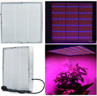 Wholesale High Power w Led Plant Grow Light Panel Led Red Blue for Hydroponic Plants Flowers Vegetables Greenhouse Hydro Lighting V