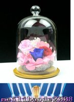 preserved flower - High quality party delicate glass display case preserved flower vase birthday Chrismas gift with glass dome MYY