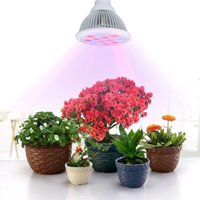 Wholesale 12 LED Indoor Garden Plant Grow Light Bulb W E27 Blue LED Red LED Hydroponic Lamp for Flower Plants Growth Vegetable Greenhouse