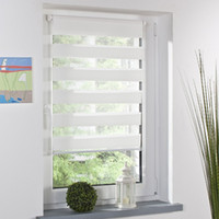 Wholesale Fashion Luxury Roller Zebra Blind Curtain Window Shade Decor Home Office White Sizes for choose