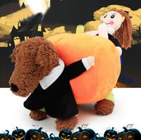 Купить Вип домашние животные-Тедди VIP переехал тыквы собаки творческие одежды Смешные личности Тедди VIP домашнее животное тыква превратилась оборудование, бесплатная доставка