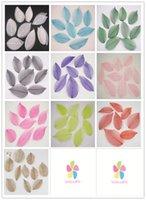 Wholesale Approx cm Multi color option Natural skeleton leaves for DIY