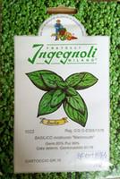 basil flowers - Flower seeds Italy imported seeds big leaf basil seeds grams bag