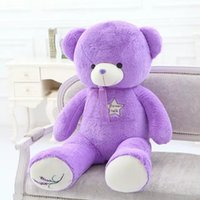 Wholesale Five Star Flower Talk Teddy Bear Flush Stuffed Bear And Retail Price Lavender Color Teddy Bear Price cm cm HANCHENEXP