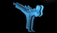 action karate - LS1705 b KARATE ACTION Home Decor Gift Light Sign jpg