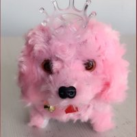 Wholesale Electronic flash forward backward shaggydog sound simulation plush toy poodle wearing a crown of electric toys