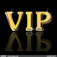 Wholesale VIP products pay links