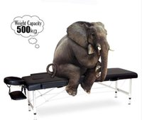 Wholesale High Quality Adjustable quot Pad quot Massage Table Bed Folding Facial Bed Massage Table Chair Beauty Massage Bed For Beauty Spa Salon