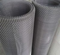 Wholesale Crimped Stainless Steel Wire Mesh High Quality Plain Weave Wire Mesh for Filters and Construction