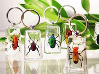 Big Kids big crafts - Real Bugs Insect Specimens Acrylic Resin Embedded Keychain Paperweight Transparent Mouse Key Rings Decoration New Fashion Toys Gifts Crafts