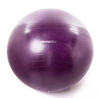 Wholesale 65cm Exercise Ball with Air Pump Body Slimming For Yoga Fitness Pilates Home Gym Body Aerobics Pilates Yoga Ball