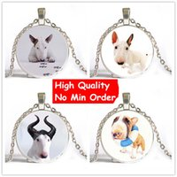 best dog photos - Bull Terrier Dog Cute Animal Photo Glass Long Chain Necklace Steampunk Silver Pendant Jewelry Best Gift For Friend Drop Shipping NS152