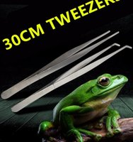 Wholesale Big size Stainless Steel Reptile Tweezers Clips with Non slip Design Tool for Frog Spider Lizard Terrarium Cleaning Feeding