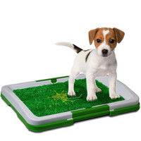 Bon Marché Chats extérieurs en plein air-Puppy Pad Holder Training Indoor Pee Potty Trainer Litter Box Coussin d'herbe synthétique pour Pet Cat Puppy Outdoor Restroom Patch