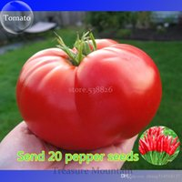 Wholesale Heirloom Giant Monster Tomato Genuine Fresh Seeds Professional Pack Seeds Pack Very Rare Vegetables TS177