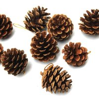 pine cones - Pine Nut for Home Decoration Christmas White Washed Pine Cone Wedding Holidays Party Supplies Hot Sale Product