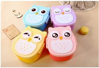 Wholesale Fantastic New Fashion High Quality Owl Lunch Box Food Container Storage Box Portable Bento Box Color Yellow Pink Purple Blue