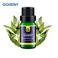Wholesale Organic Eucalyptus Essential Oil Pure Therapeutic Grade Eucalyptus Oil ml Premium Quality for Aromatherapy Diffuser