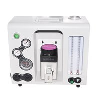 Wholesale 100 High Quality Vet Anesthesia Machine Used for Vet Medical Anesthesia Machine New Arrival AM V For Vet