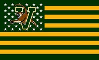 Wholesale Vermont Catamounts flag with metal grommets Large Fans Supporters Outdoor Indoor Banner x3ft